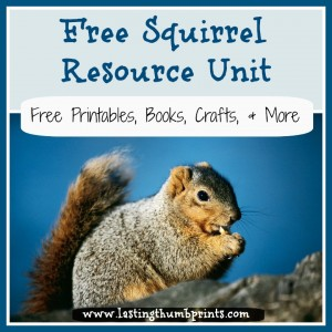 Free Squirrel Resource Unit