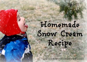 Homemade Snow Cream Recipe