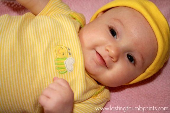babybee2
