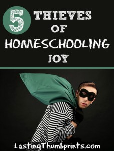 5 Thieves of Homeschooling Joy