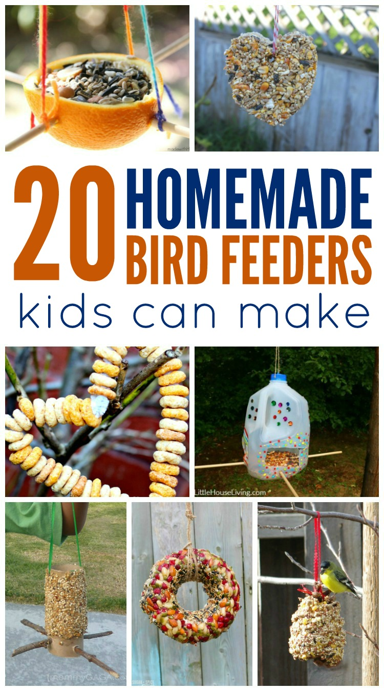 Homemade Bird Feeders Kids Can Make